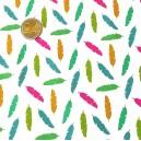 Coton / feuilles